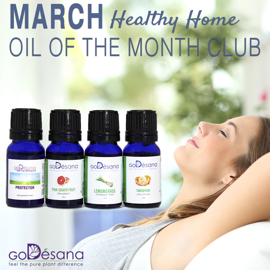 Oil Of The Month Basic Pack