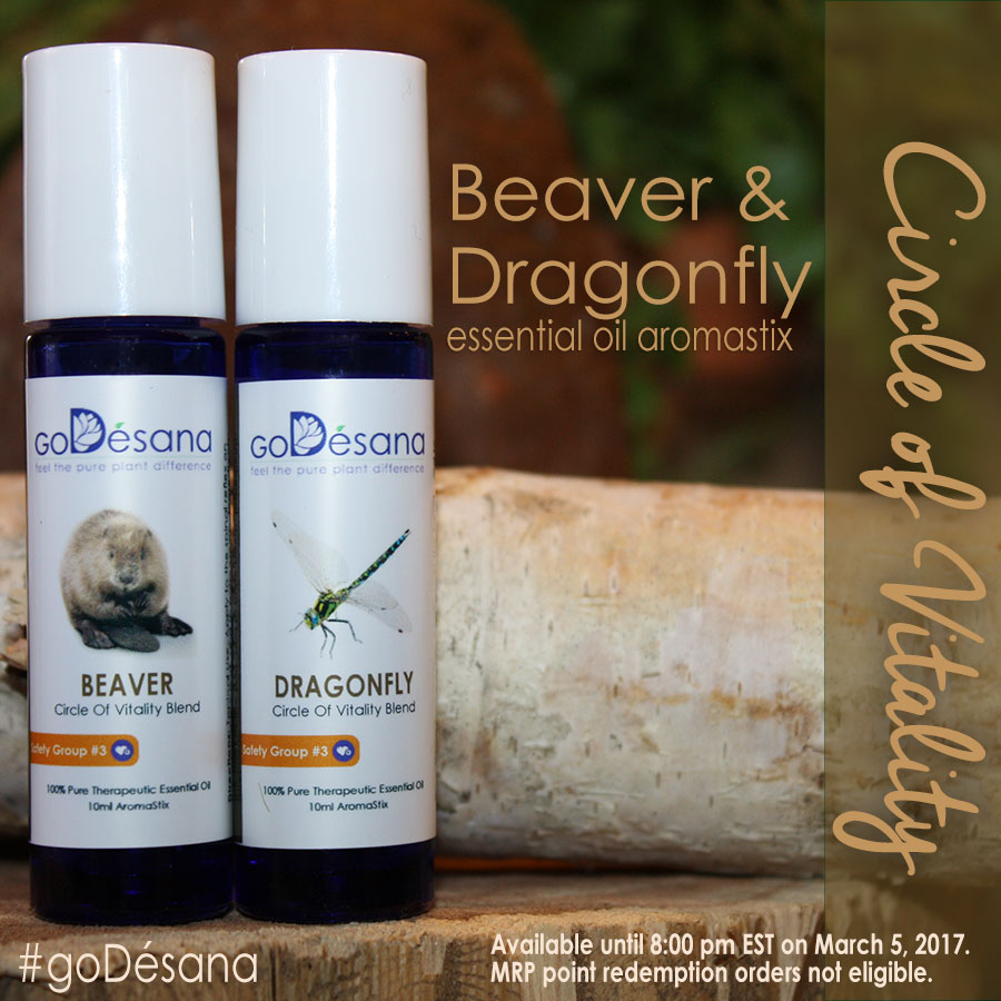 Circle of Vitality Beaver & Dragonfly AromaStix