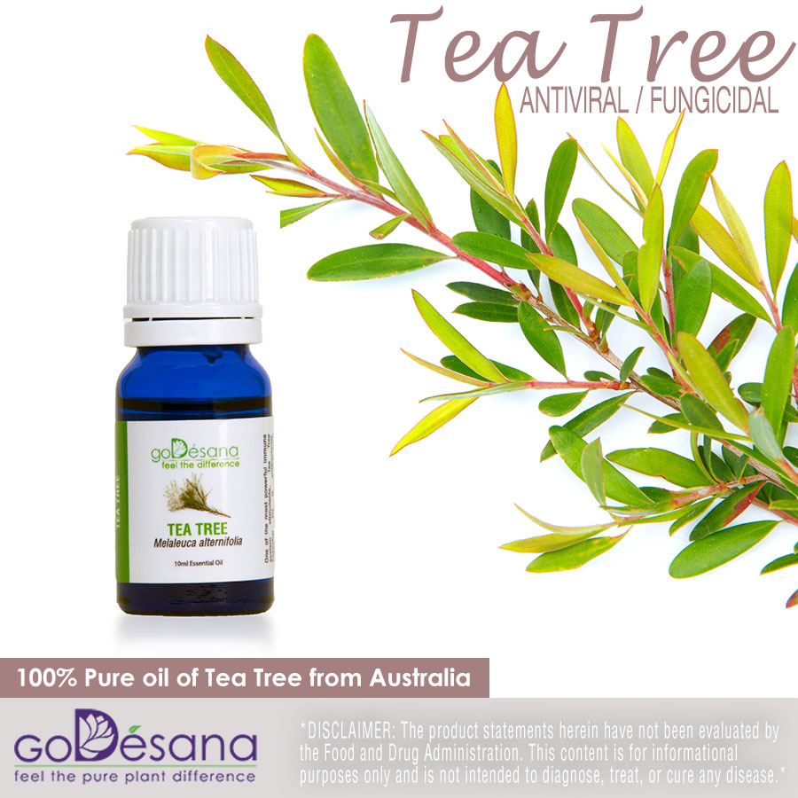 Tea Tree Essential Oil Social Media Image